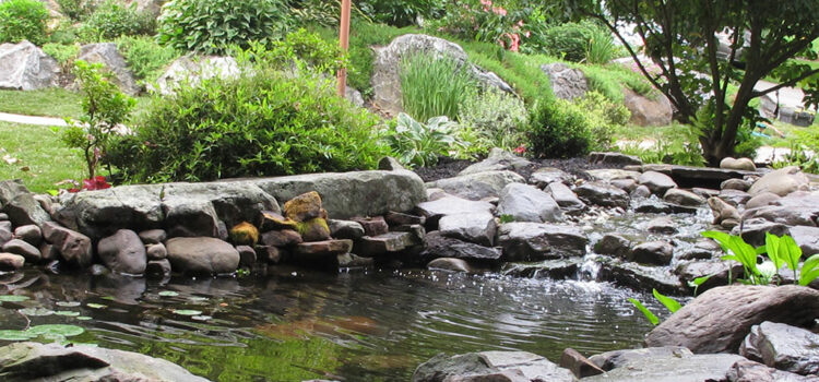 York County PA Pond and Garden Design